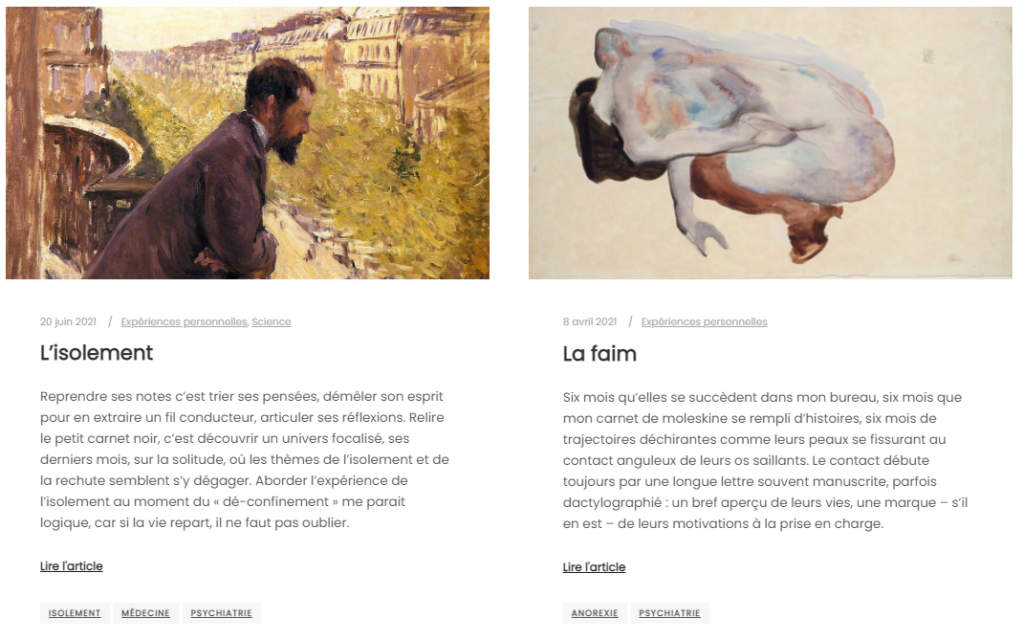 Capture d'écran du blog Les Méninges.